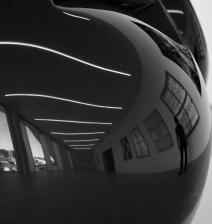 Jeff Koons - Tulips (Fondazione Prada)